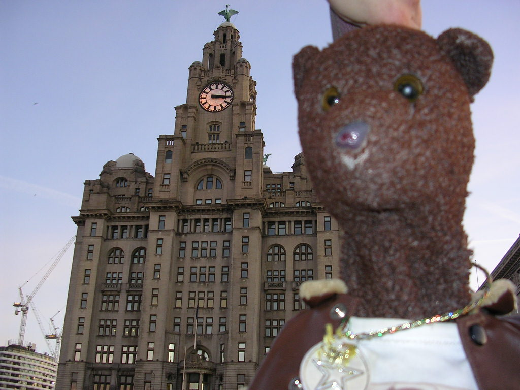 photo of bearsac by the liver building